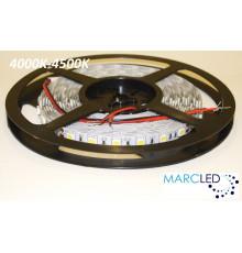 24VDC LED Flexible Strip (tape) 4000-4500K SMD5060, 14.4W/m, 60 LEDs/m, IP20, 5m  (5000mm)