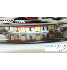 12VDC LED Strip 4000K-4500K SMD5060, 14.4W, 60 LEDs, IP20, 5m  (1000mm)