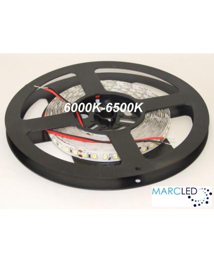 24VDC LED Flexible Strip daylight 6000K-6500K SMD2835, IP20, 5m a roll  (80W, 600LEDs)