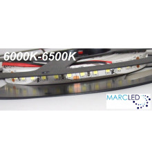 24VDC LED Flexible Strip daylight 6000K-6500K SMD2835, IP20, 5m a roll  (80W, 600LEDs)