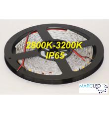 24VDC SMD5050 LED Flexible Strip warm white 3000K, IP65 (silicon glue coated), 5m  (72W, 300LEDs)