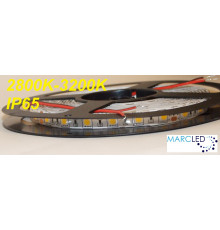 24VDC SMD5050 LED Flexible Strip warm white 3000K, IP65 (silicon glue coated), 5m  (72W, 300LEDs)