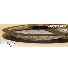24VDC SMD5050 LED Flexible Strip 4000K-4500K, IP54 (silicon glue coated), 5m  (72W, 300LEDs)