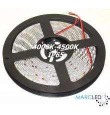 24VDC SMD5050 LED Flexible Strip 4000K-4500K, IP54 (silicon glue coated), 5m  (72W, 300LEDs)