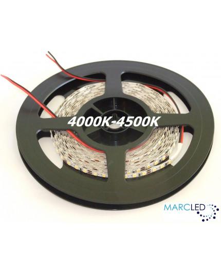 12VDC LED tape 5mm, natural white 4000K, 14.4W/m, 120LED/m, IP20, 5m (72W, 600 LED), SMD2835