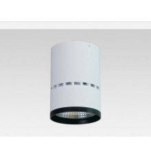 20W Surface Mounted LED lamp